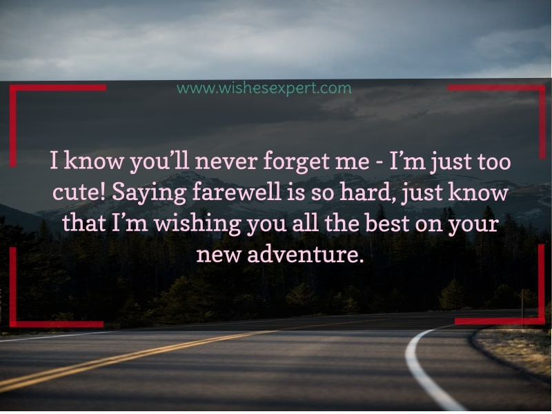 Funny Farewell Quotes