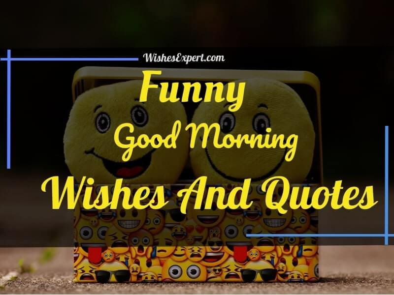 Funny good morning quotes, wishes, and messages